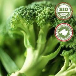 Brócoli (aprox. 500gr)