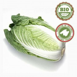 Cabbage, Chinese - unidad (1Kg)