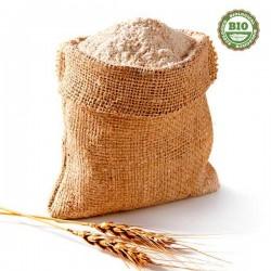 Whole wheat flour (500gr)