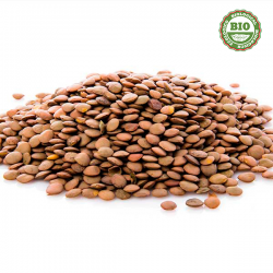 Lentille brun (500gr)