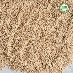 Round brown rice (500gr)
