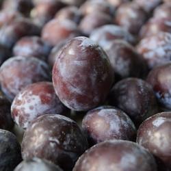Prune rouge (1Kg)