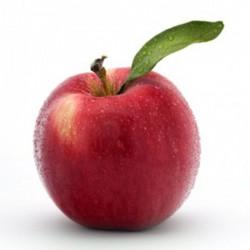 Pommes Gala en vrac (1Kg)