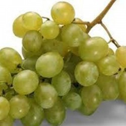 White grapes (500gr)