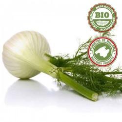 Onion Shallots (500gr)