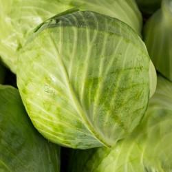 Cabbages Repollo (unit)