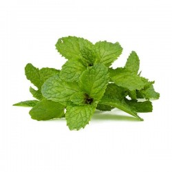Peppermint tray (100gr aprox.)