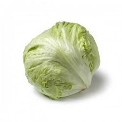 Lettuces Iceberg (unit)