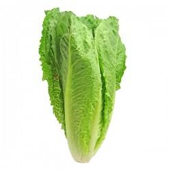 Lettuce Romaine (unit)