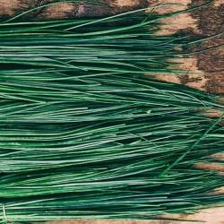 Cebollinos bandeja (100gr aprox.)