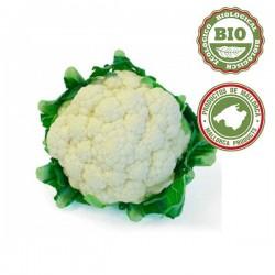 Cauliflowers (Unit)